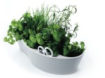 Herb Garden pour plantes aromatiques